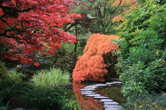 Beautiful garden - Making love last a lifetime